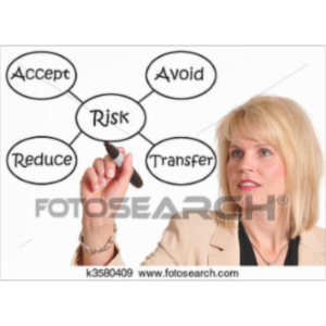 Enterprise and Individual Risk Management icon