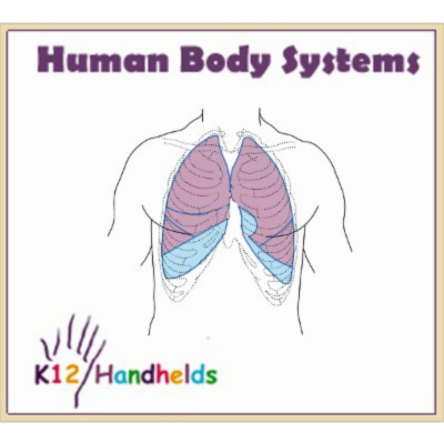 Human Body Systems icon