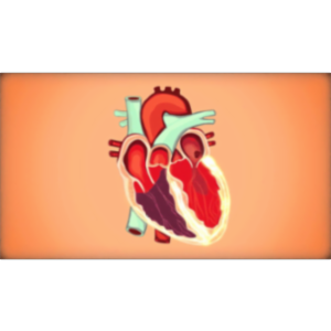 Living with Atrial Fibrillation (AFib) icon