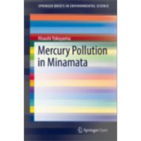 Mercury Pollution in Minamata | SpringerLink icon