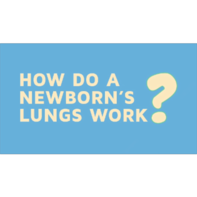 How Do A Newborns Lungs Work?