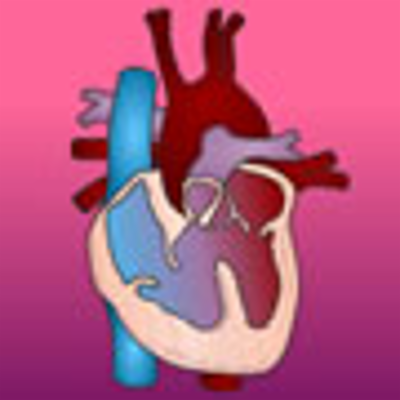 Heart Education Awareness Resource and Training through E-learning