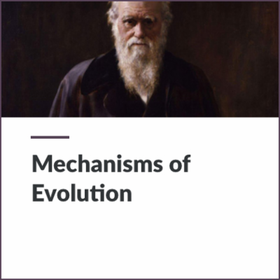 Digital Lesson - Mechanisms of Evolution | Blending Education icon