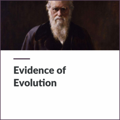 Digital Lesson - Evidence of Evolution | Blending Education icon