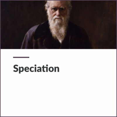 Digital Lesson - Speciation | Blending Education icon