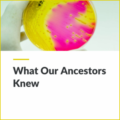 Digital Lesson - What Our Ancestors Knew | Blending Education icon