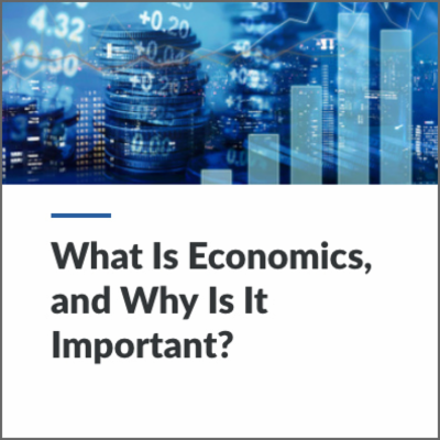 Digital Lesson - What is Economics, and Why is it Important? | Blending Education icon