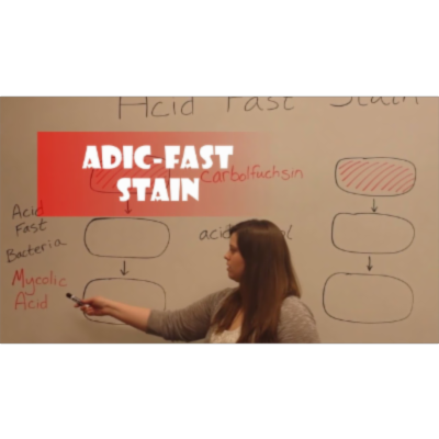 Acid-Fast Stain (Video) icon