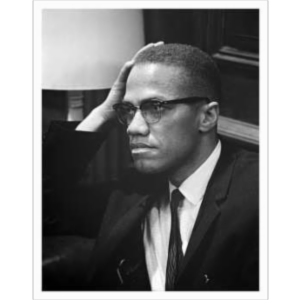 ESL CIVICS: MalcolmX.Org Website icon