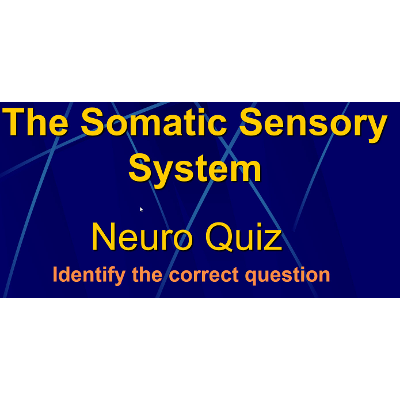 The Sensory System: Quiz Game