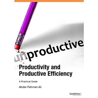 Productivity and Productive Efficiency