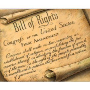 Bill of Rights ID Lesson Plan icon