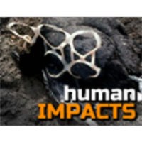 Human Impacts on the Environment 14-16 year olds icon