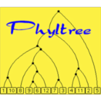 Phylogeny and Reconstructing Phylogenetic Trees icon