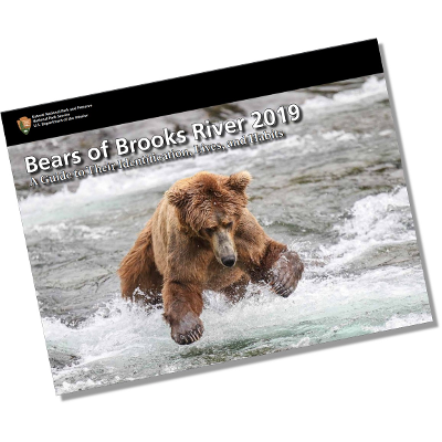 Bears of Brooks River at Katmai National Park & Preserve (eBook) icon