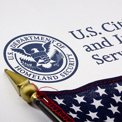 Basics of Immigration Law icon