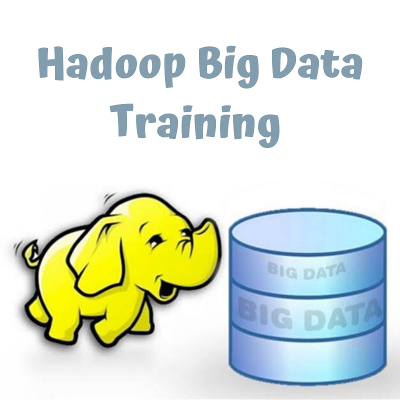 Big Data Online Course icon