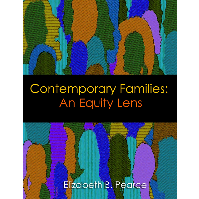 Contemporary Families: An Equity Lens icon