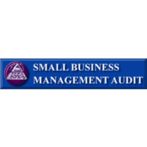 Small Business Management Audit icon