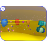 Electron Transport Chain icon