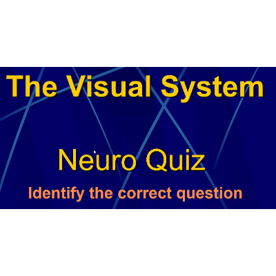 Visual System Quiz Game