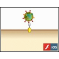 Influenza Virus Entry into a Cell icon