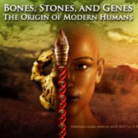Bones, Stones, and Genes: The Origin of Modern Humans  Lecture 4 – Hominid Paleobiology icon