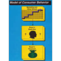 Buyer Behavior Unit for Introductory Marketing icon