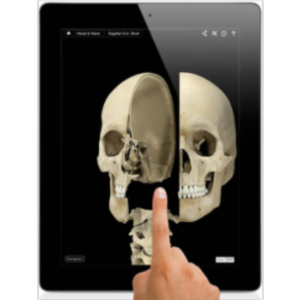 Skeleton System Pro III App for iPad icon