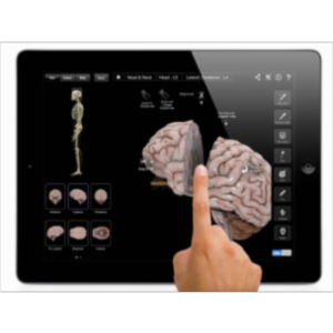 Brain and Nervous System Pro III App for iPad