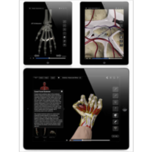 Hand and Wrist Pro III with Animations App for iPad icon