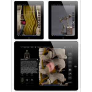 Spine Pro III App for iPad icon