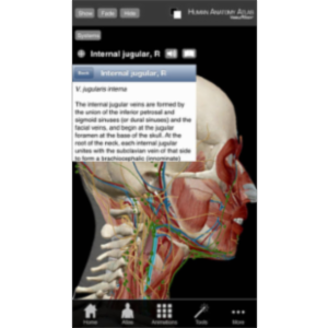 Human Anatomy Atlas App for iOS icon