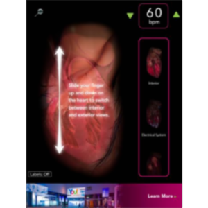 Virtual Heart App for iPad