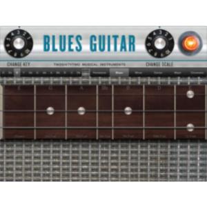 Blues Guitar App for iPad icon