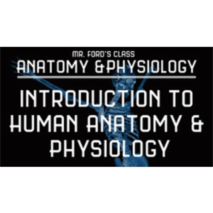 Intro to Human Anatomy and Physiology (w/exclusive videos)