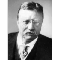 Theodore Roosevelt: Lion in the White House icon