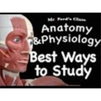 The Muscular System : Best Ways to Study the Muscular System(09:08) icon