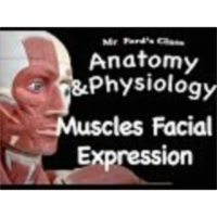 The Muscular System : Muscles of Facial Expression (09:09) icon