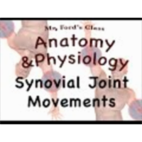 Joints and Articulations :  Synovial Joint Movements (08:11)