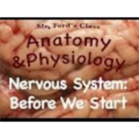 The Nervous System : Before We Start (10:08) icon