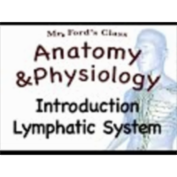 The Lymphatic System : Introduction (15:01) icon
