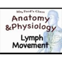 The Lymphatic System : Lymph Movement (15:03) icon