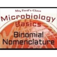 Binomial nomenclature : Microbiology Basics icon