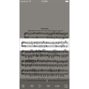 Mussorgsky Pictures at an Exhibition App for iOS icon