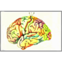 The Changing Brain icon