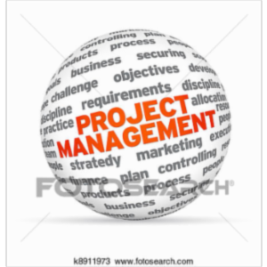 Beginning Project Management