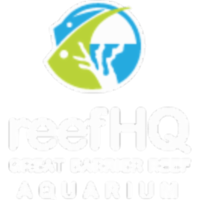 Great Barrier Reef Aquarium icon