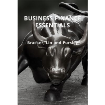 Business Finance Essentials