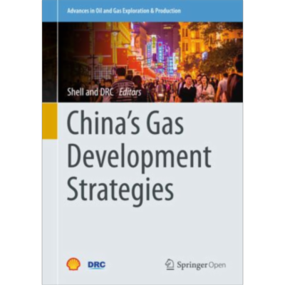 China's Gas Development Strategies | SpringerLink icon
